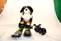 Collection - Dog Skis-7