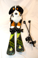 Collection - Dog Skis-8