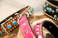 Collection - Dog Collar-5