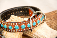 Collection - Dog Collar-7